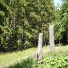 Pădurea 06