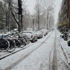 Iarna în Amsterdam 11