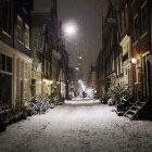 Iarna în Amsterdam 17