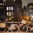 Iarna în Amsterdam 26