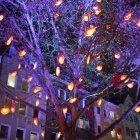 Copacul cu inimi
