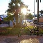 Palmieri, apus, biciclete
