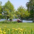Amintiri de primăvară 16
