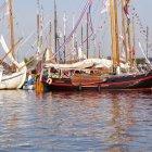 Sail Amsterdam 15