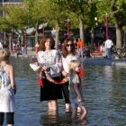 Ziua Iei Amsterdam 24