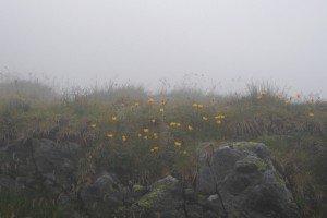 Ceață la Bâlea
