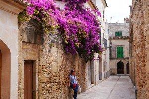 In Alcudia, sub o cascada de flori