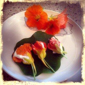 Flori de călțunași umplute cu brânză