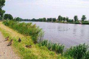 Plimbare cu bicicleta pe malul Amstelului