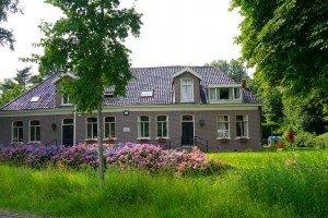 Superbă casă cu hortensii