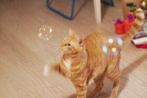 Ne jucăm cu baloane de săpun