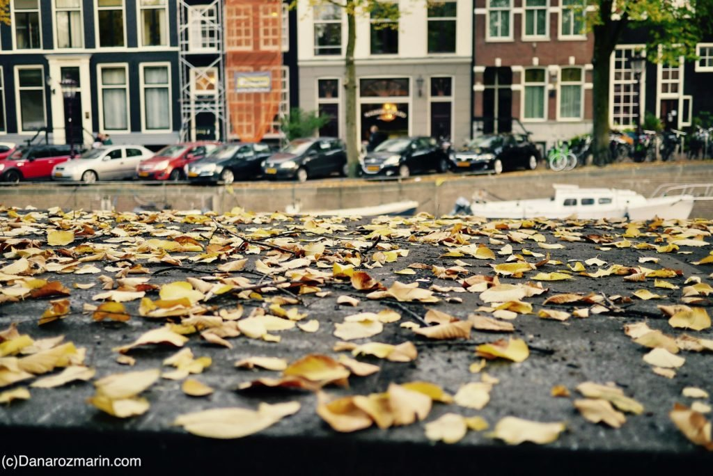 Toamna în Amsterdam 07