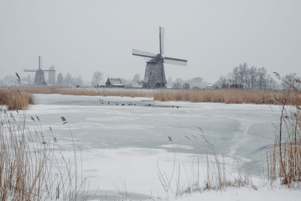 Iarna în Olanda 02
