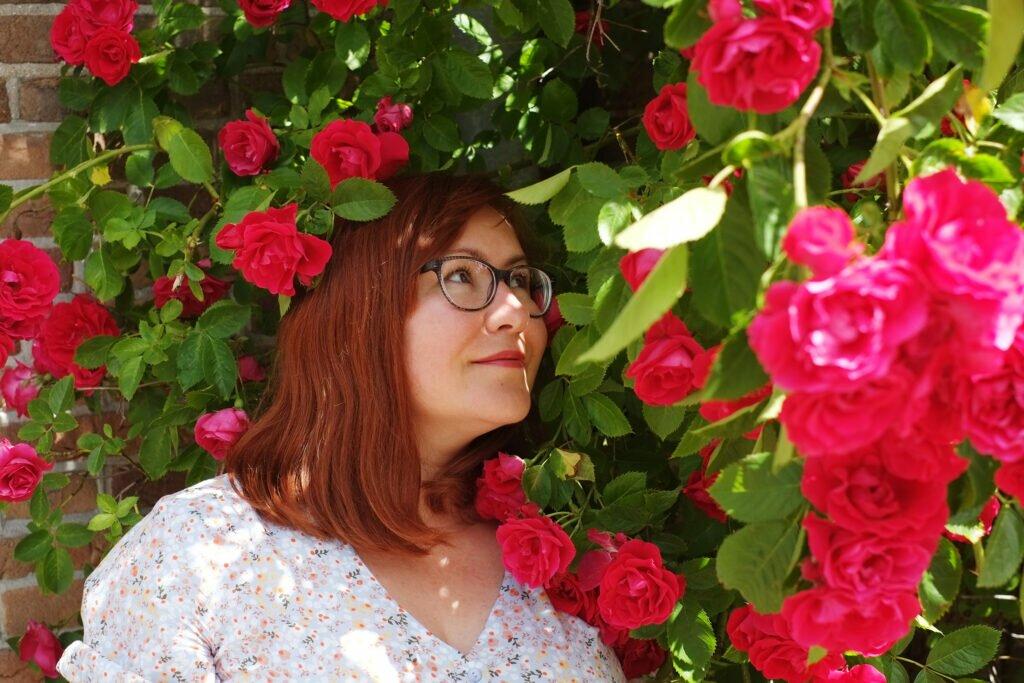 În tufișul de trandafiri